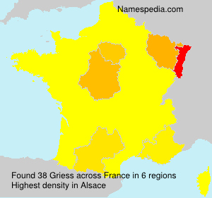 Surname Griess in France