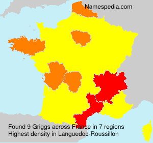Surname Griggs in France