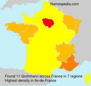 Surname Grohmann in France