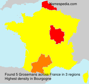 Surname Grosemans in France