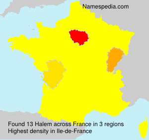 Surname Halem in France