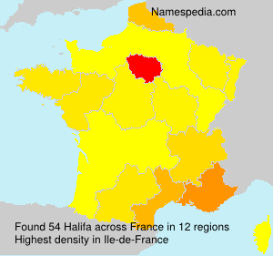 Surname Halifa in France