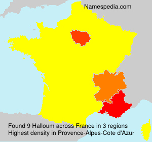 Surname Halloum in France