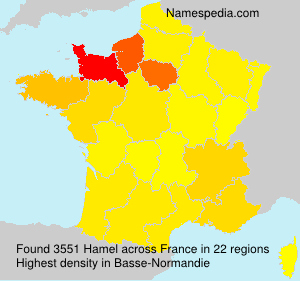 Surname Hamel in France