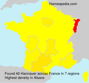 Surname Hannauer in France