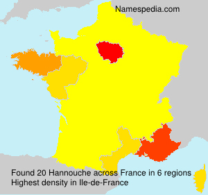 Surname Hannouche in France