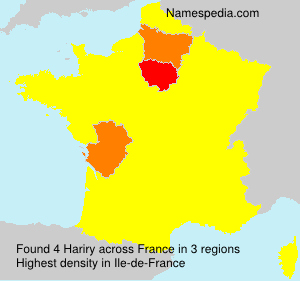 Surname Hariry in France