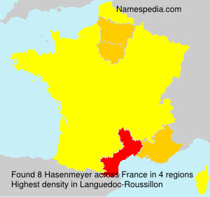 Surname Hasenmeyer in France