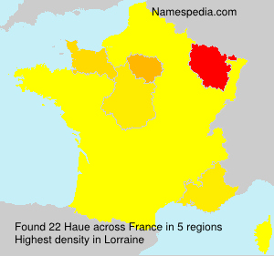 Surname Haue in France