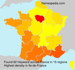 Surname Hayward in France