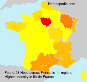Surname Hees in France