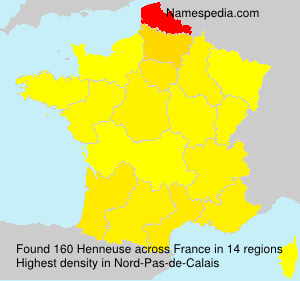 Surname Henneuse in France