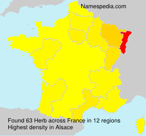 Surname Herb in France