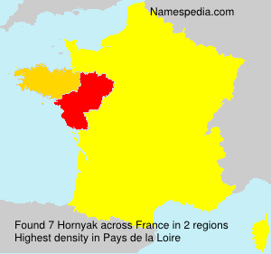 Surname Hornyak in France