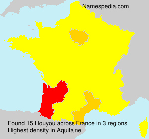 Surname Houyou in France