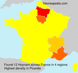 Surname Hoynant in France