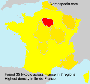 Surname Ivkovic in France