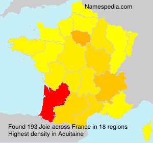 Surname Joie in France