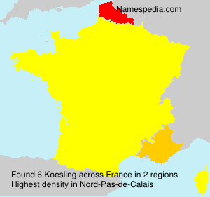 Surname Koesling in France