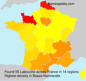 Surname Labouche in France