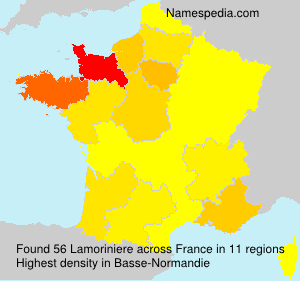 Surname Lamoriniere in France