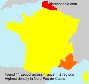 Surname Leucci in France