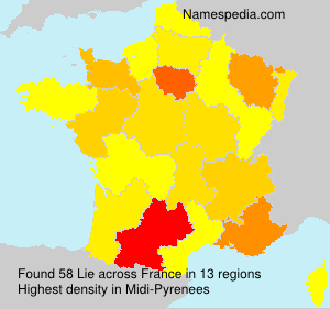 Surname Lie in France