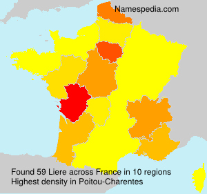 Surname Liere in France