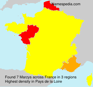 Surname Marzys in France