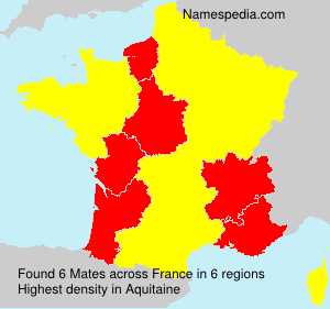 Surname Mates in France
