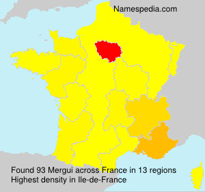 Surname Mergui in France