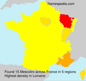 Surname Mescolini in France