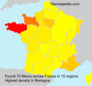 Surname Meury in France