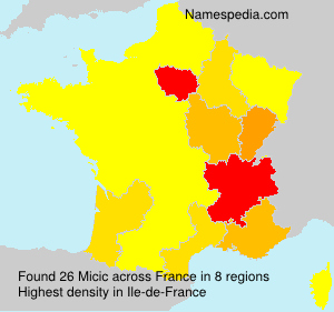 Surname Micic in France