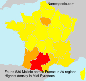 Surname Molinie in France