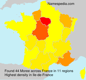 Surname Moree in France