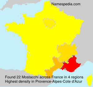 Surname Mostacchi in France