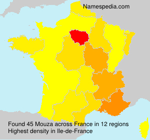 Surname Mouza in France