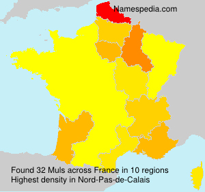 Surname Muls in France
