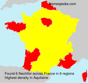 Surname Nechifor in France