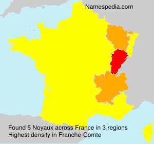 Surname Noyaux in France