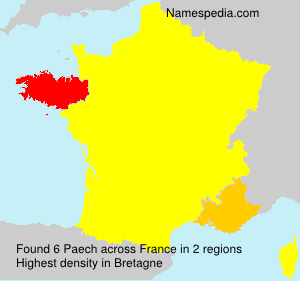 Surname Paech in France