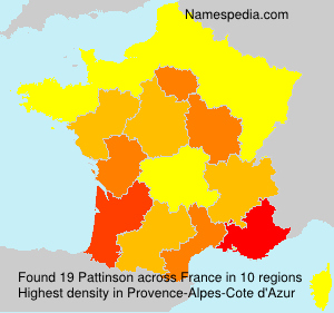 Surname Pattinson in France