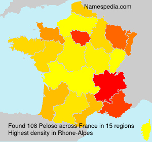 Surname Peloso in France