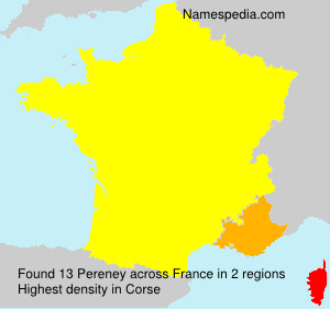 Surname Pereney in France