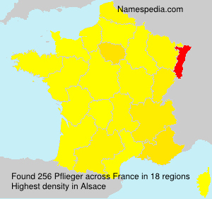 Surname Pflieger in France
