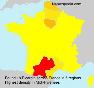 Surname Picardin in France