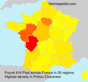 Surname Pied in France