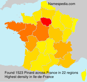 Surname Pinard in France