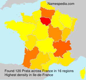 Surname Prata in France